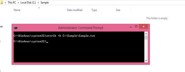 attrib hide sample